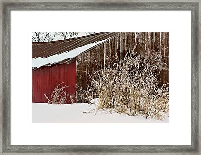 Autumn's End Framed Print by Nikolyn McDonald