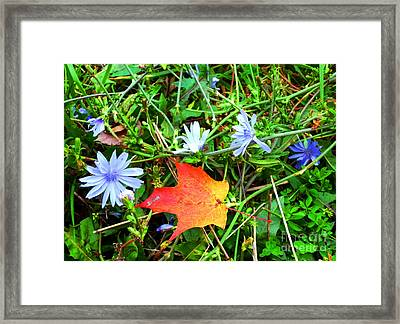 Framed Print featuring the photograph Autumns First Leaf by Jackie Carpenter