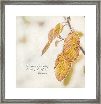 Autumn's Flowers Framed Print by Angie Vogel