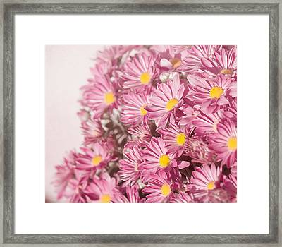 Autumn's Flowers Framed Print by Kim Hojnacki