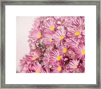 Autumn's Flowers Framed Print