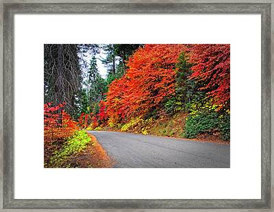 Framed Print featuring the photograph Autumn's Glory by Lynn Bauer