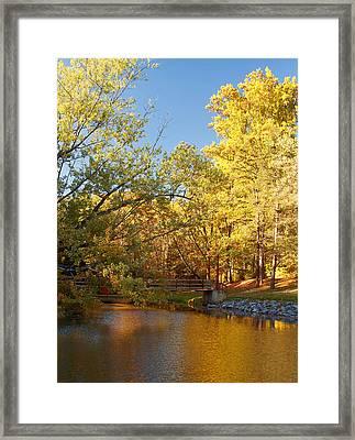 Autumn's Golden Pond Framed Print by Kim Hojnacki