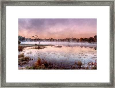 Autumns Light Framed Print by Darren Fisher