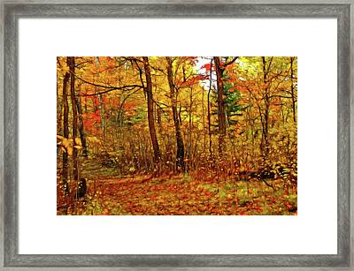 Autumn's Magic Framed Print by Bill Morgenstern