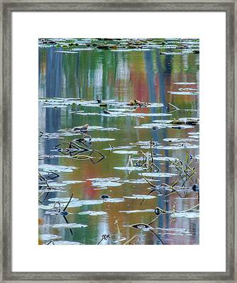 Autumns Painting Framed Print by Optical Playground By MP Ray