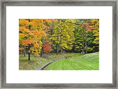 Autumns Playground Framed Print