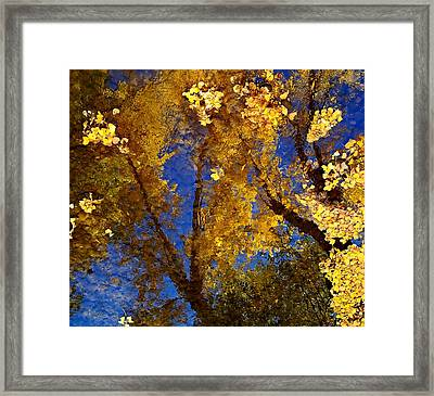 Autumns Reflections Framed Print