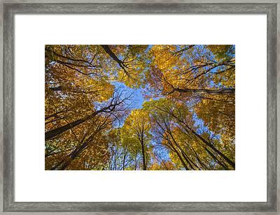 Autumn's Rooftop Framed Print