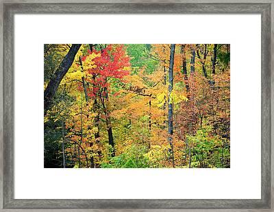 Autumns Splendor Framed Print by Frozen in Time Fine Art Photography