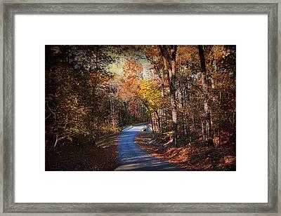 Autumn's Stage Framed Print by Jai Johnson