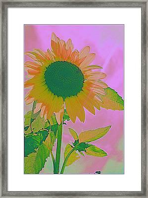 Autumn's Sunflower Pop Art Framed Print