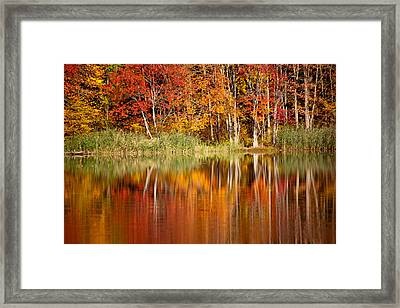 Autumns True Colors Framed Print by Karol Livote