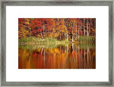 Autumns True Colors Framed Print