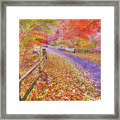 Autumns Way Rouge Framed Print by John Kelly