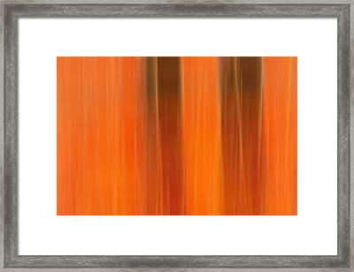 Autunno Amore Framed Print