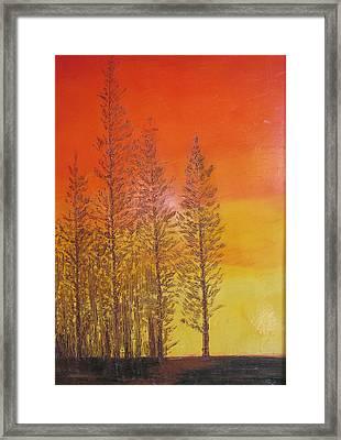 Autunno E Tramonto Framed Print