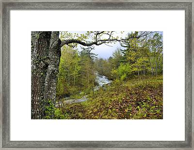 Acadia Spring Framed Print by Stephen  Vecchiotti