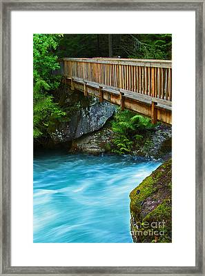 Avalanche Creek Footbridge Five Framed Print by Donald Sewell