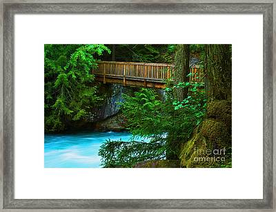 Avalanche Creek Footbridge One Framed Print by Donald Sewell