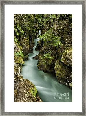 Avalanche Creek - Glacier National Park Montana Framed Print by Thomas Schoeller