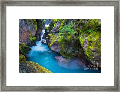 Avalanche Creek Gorge Framed Print by Inge Johnsson