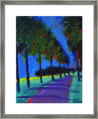 Avenue Framed Print by Paul Powis
