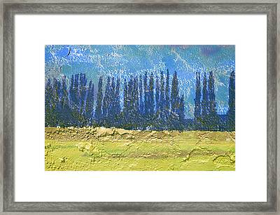 Avenue In The Country Framed Print
