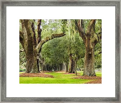 Avenue Framed Print