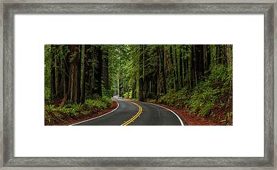 Avenue Of The Giants Passing Framed Print