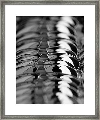 Framed Print featuring the photograph Aviators by Erin Kohlenberg
