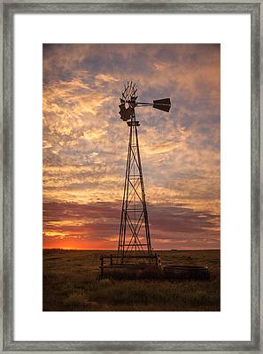 Awaiting Morning Framed Print by Shirley Heier