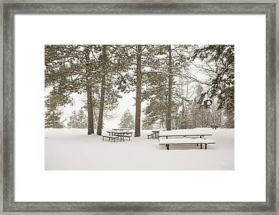 Awaiting Spring Framed Print by Tim Grams