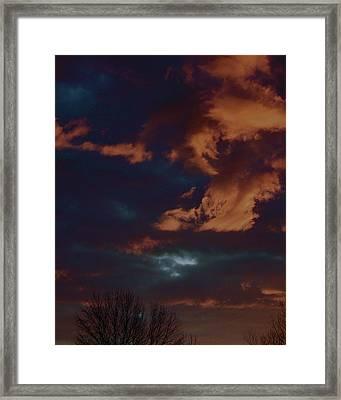 Awakened Framed Print by Tim Good