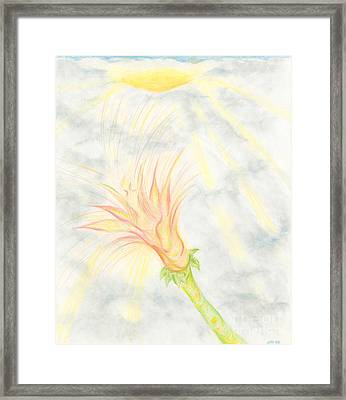 Framed Print featuring the drawing Awakening by Kim Sy Ok