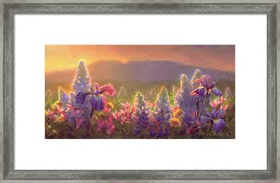 Awakening - Mt Susitna Spring - Sleeping Lady Framed Print by Karen Whitworth