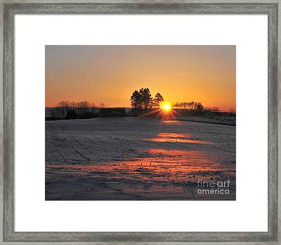 Framed Print featuring the photograph Awakening by Terri Gostola