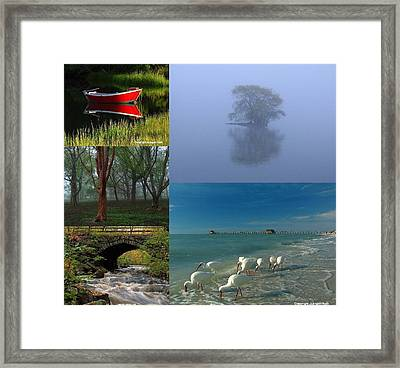 Award Winning Photography Pictures Framed Print by Juergen Roth