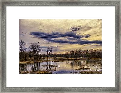 Away From It All Framed Print