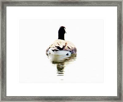 Away Framed Print by Judy Via-Wolff
