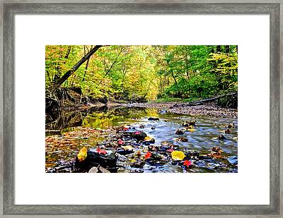 Awesome Autumn  Framed Print by Frozen in Time Fine Art Photography