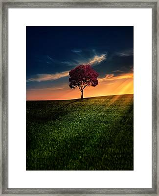 Awesome Solitude Framed Print