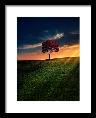 Agriculture Framed Prints
