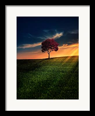 Sun Rays Framed Prints