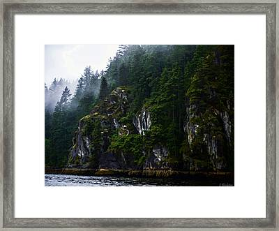 Awesomeness Of Nature Framed Print by Jordan Blackstone