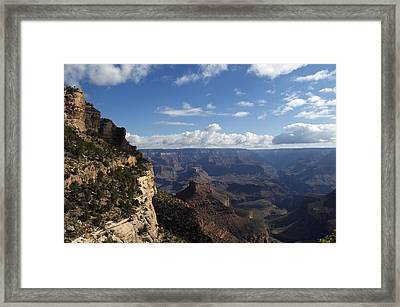 Awestruck Framed Print
