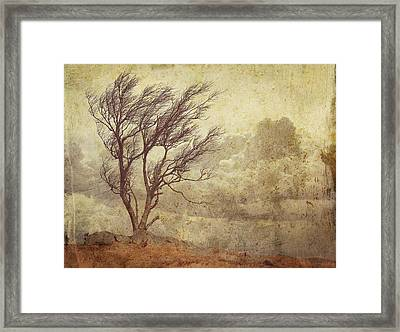 Axiom Framed Print by Brett Pfister