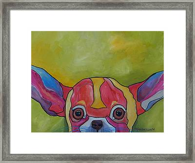 Aye Chihuahua Framed Print by Patti Schermerhorn