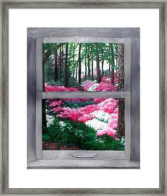 Azalea Bowl Overlook Gardens Framed Print by Beth Parrish