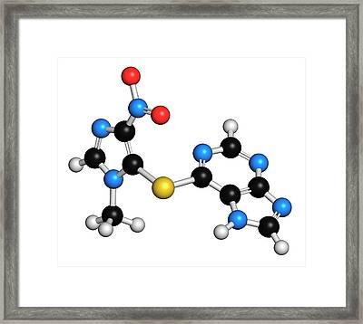 Azathioprine Immunosuppressive Drug Framed Print by Molekuul